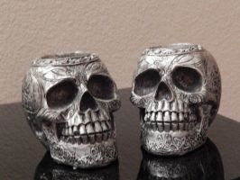 Skull 001 by diphylla