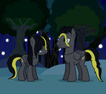 Night Long Y Night Light by alfamorfeus