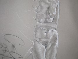Life Drawing by AzureMosquito