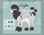 Clyde Reference Sheet 2015 by PinkPoodle543