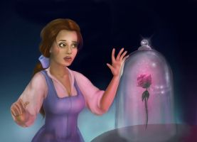 Princess Belle by marmurok