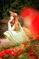 Spice and Wolf: Red Flower by e-l-y-n-n