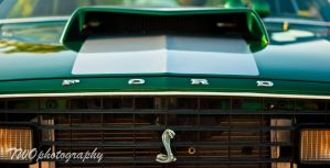 Ford by TWOphotography