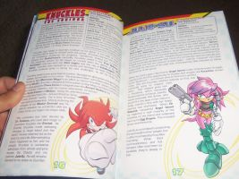 Sonic Encyclopedia : Knuckles and Julie-Su by bvw1979