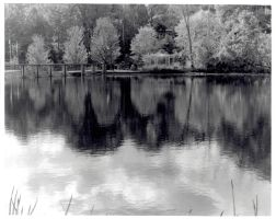 Photography - River Reflection by AnimeVeteran