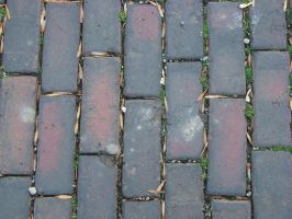 Brick Texture 3 by Freedom-Falling