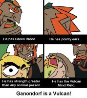 Ganondorf is a Vulcan by TheTitan99