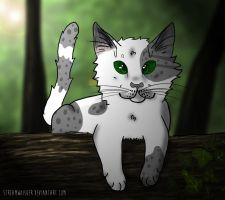 World of Wonder - AT with dovewing66 by Streamwhisker