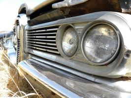 Wall-eyed Edsel by QuanticChaos1000