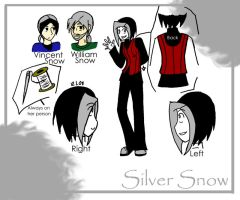 +Silver Snow Reference+ by xdarksoul07x