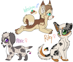 Pup Adoptables CLOSED by Eevie-chu