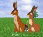 Hazel and Fiver on Watership Down by Shaydeelady