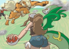 Pkmn Battle by MediocreMatt