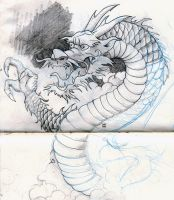 dragon sketch by olimueller