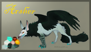 Arsher's reference sheet by Kezzai