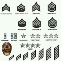 Los Angeles Police Department Rank Insignia by guardmn