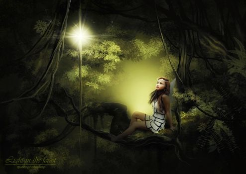 LigHt iN thE FoREst by queenphotoshop