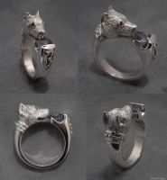 Pitbulll ring by Dans-Magic