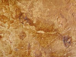 Mottled Rusty Paint 4 by agentraygun
