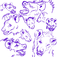 Hyena Expressions by Majass
