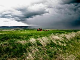 Red Tractor by Ashtyn-Renee