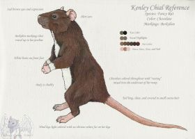 Kenley Chial Ref - rat by PhoenixAshesRats