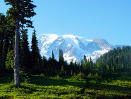 Late Day Shadows at Mount Rainier National Park by FlutterbatIsMagic