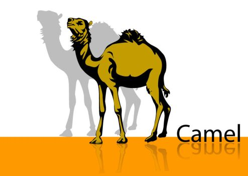 Camel in Vector by illustrator-artwork