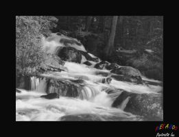 Stream 1 in Black and White by Curim