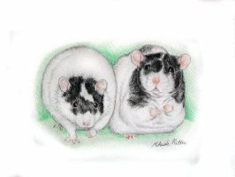 Merry and Pippin rats by nikkiburr