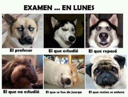 Examen El Lunes by sleeper-dupster