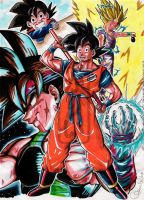 DB-Gokus Family_col by Goldman-Karee