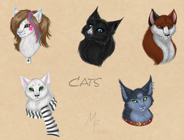 Cats by Melona-F