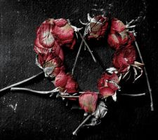 The Roses Died... by rockgem