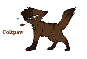 Coltpaw Reference 2014 by Purrlstar
