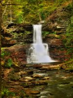 Ricketts Glen State Park 55 by Dracoart-Stock