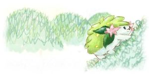Shaymin cute by Rin171
