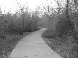 Park Path Black and White by abuseofstock
