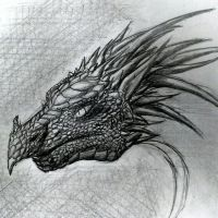 Dragon Head - April 12th 2013 by falzelo