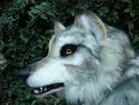 pale wolf quadsuit headshot by LilleahWest