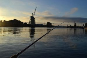 industrial fishing by chanmanthechinaman