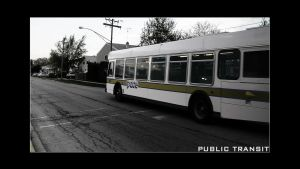 PUBLIC TRANSPORATION by deadlydesigns