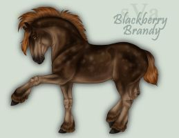 2871 sVa Blackberry Brandy by sVa-BinaryStar