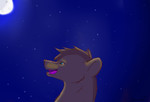 a beautiful night by Darkwolfhellhound