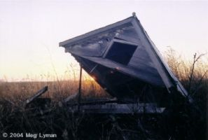 The Shack That Nobody Wanted by MegLyman