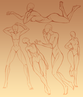 Anatomy Study Human Ladies by Hauket