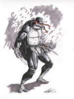 Sample Sketch--Raphael by tedwoodsart