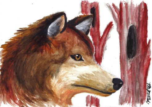speed painted wolf by kalshix