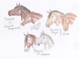 LRS Breedings by Salvada