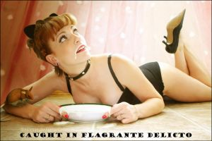 Caught in Flagrante Delicto by Doucesse